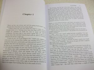 'The Powers That Be' Chapter 1 interior photo